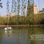 春色满园-乐天堂fun88备用网址人民公园掠影---2012年5月5日